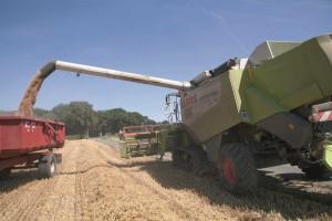 Ceny usług rolniczych w sezonie 2015