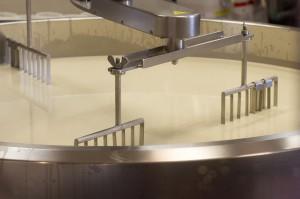 Ranking największych mleczarni świata