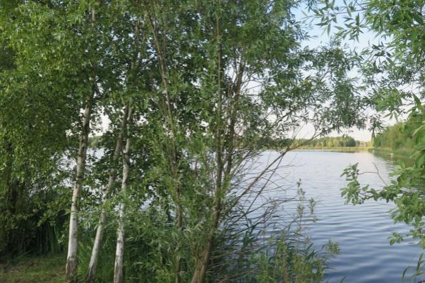 NIK: próba zakupu Polskich Kolei Linowych przez Lasy Państwowe - niecelowa