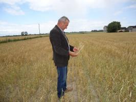 Zjednoczona Lewica za zwiększeniem dopłat dla poszkodowanych rolników