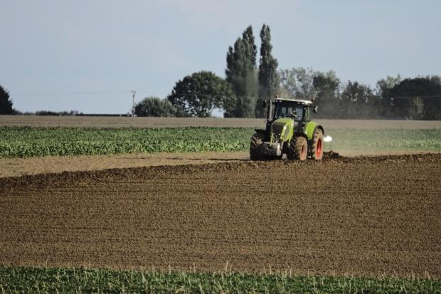 """Szkolenia w ramach """"Wsparcia inwestycji w gospodarstwach rolnych"""""""