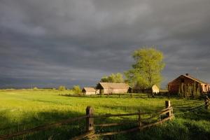 Szydło: Polska wieś potrzebuje dobrego gospodarza