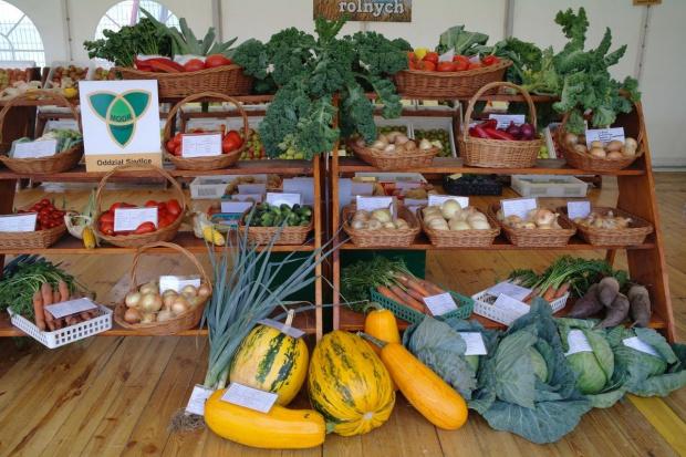 XXII Międzynarodowe Dni z Doradztwem Rolniczym za nami