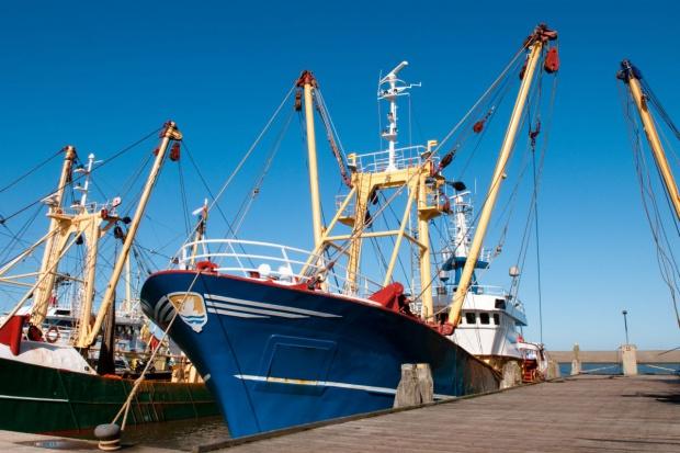 MRiRW: eksport ryb do Rosji jest minimalny, więc nowe embargo nieistotne