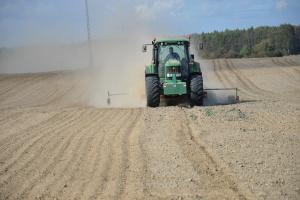 Siew pszenicy w pył