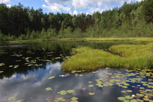 Opolskie Forum Mikroretencji o walce z suszą i zmianach klimatu