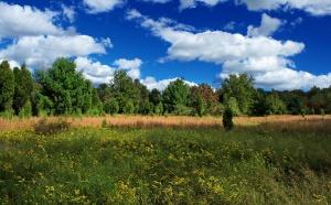 Bez poprawek do noweli o opłatach za wyłączenie gruntów z produkcji rolnej