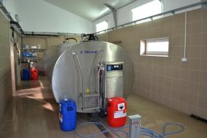 Zmiana w przepisach dotyczących rozkładania kar za nadprodukcję mleka
