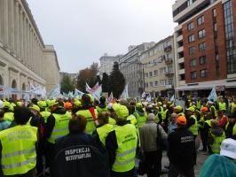 Protest lekarzy weterynarii w Warszawie