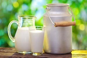 Ceny produktów mlecznych odrabiają straty