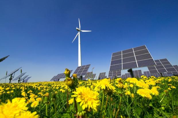 Greenpeace: Polacy chcą, by więcej energii pochodziło z OZE