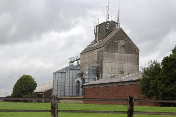 Rosja: Trwa wzrost interwencyjnych cen skupu zbóż