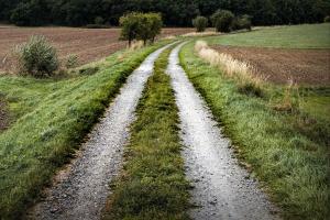 Ochrona ziemi i ubezpieczenia to dla PiS najpilniejsze sprawy w rolnictwie