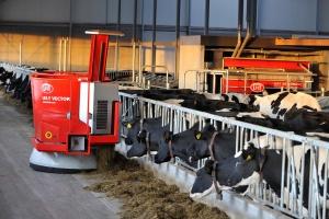 Popraw wydajność żywienia dzięki nowym raportom Lely T4C Vector