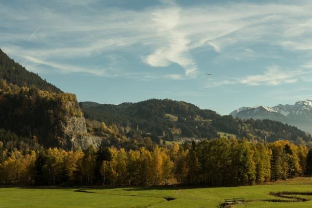 Copa-Cogeca o zrównoważonej gospodarce leśnej