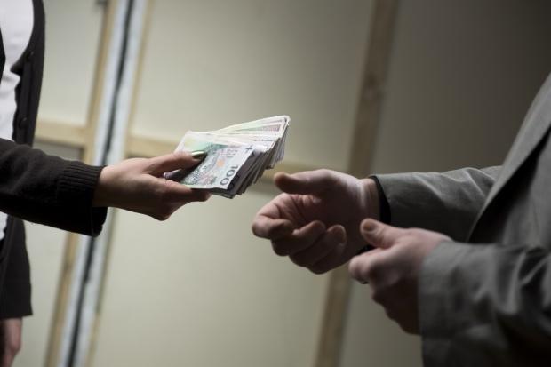 ARiMR o przekazywaniu i wypłacaniu zaliczek dopłat bezpośrednich