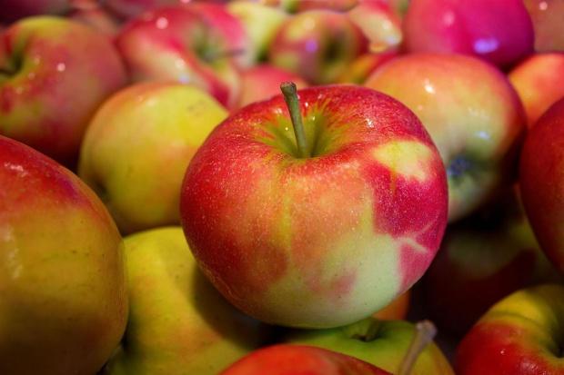Koniec prymatu w eksporcie jabłek