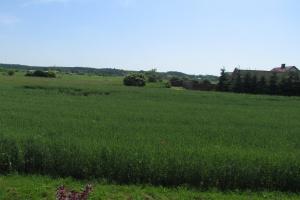 Rozpoczęły się prace nad ustawą wstrzymującą zmiany w sprzedaży ziemi