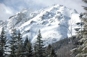 Tatrzański PN stawia na fotowoltaikę