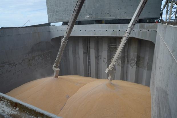 Rosja: Rekordowy eksport zbóż w pierwszej połowie sezonu 2015/2016