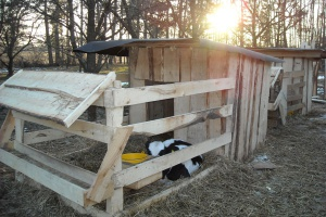 Zimny wychów w drewnianych budkach