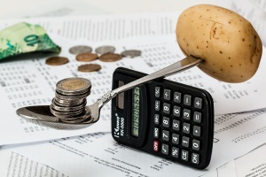 GUS: Rosną ceny na rynku rolnym