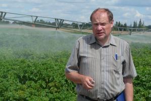 Ziemniaki: Branża w przebudowie