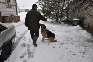 Węgry: Zakaz trzymania psów na łańcuchu