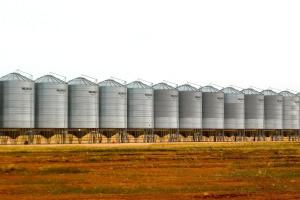Mizerny rok notowań surowców rolnych