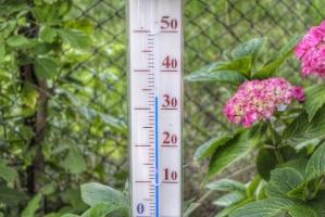 IUNG: W 2015 padły rekordy ciepła