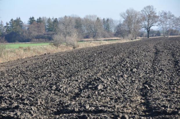 Zakaz sprzedaży ziemi chroni rolników przed dalszym zadłużaniem się (video)