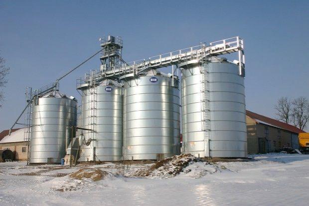 W dwóch skupach ceny zbóż obniżyły się, w pozostałych bez zmian