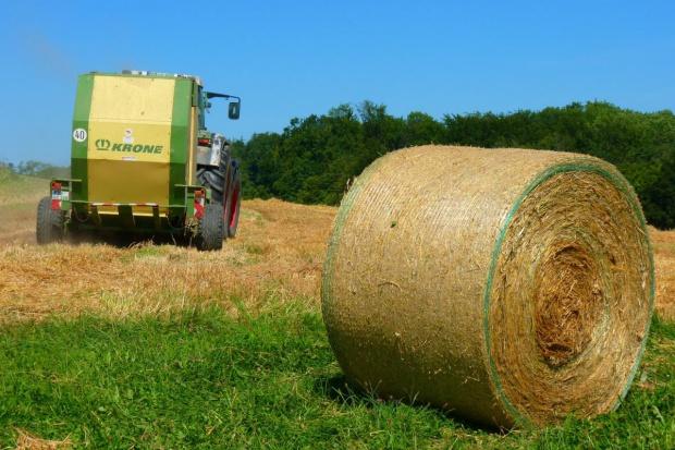 Jak zakaz sprzedaży ziemi państwowej może wpłynąć na ceny gruntów?