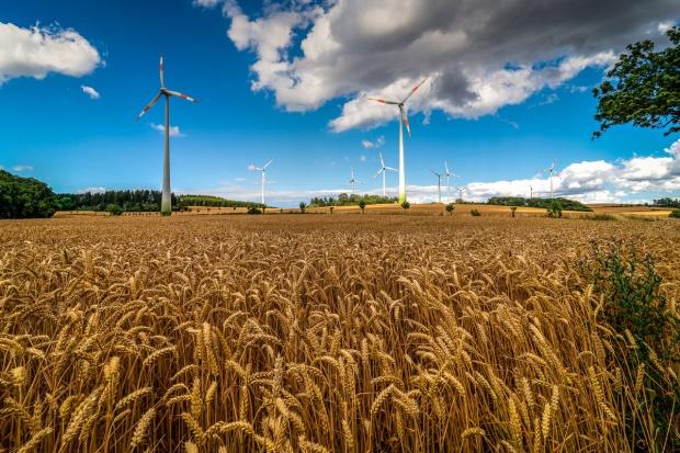 Wiceminister środowiska: trzeba uszanować problemy ludzi sąsiadujących z wiatrakami