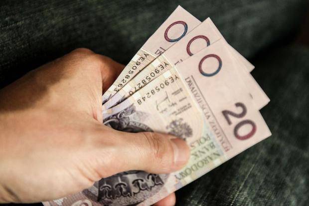 Od 15 stycznia można składać wnioski o dopłaty do materiału siewnego