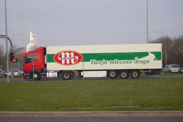 Mlekovita największym polskim eksporterem produktów mleczarskich