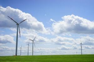Dania ustanawia światowy rekord zużycia energii wiatrowej