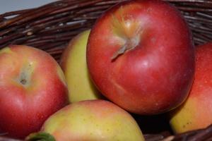 Stan zapasów jabłek i gruszek