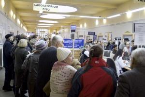 Świńska grypa jest już na terenie Polski
