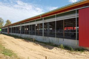 Dania: Mimo kryzysu rolnicy modernizują i rozbudowują obory