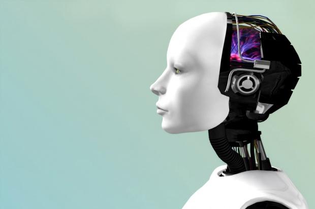 Japonia: Roboty wyprodukują 30 tys. główek sałaty dziennie