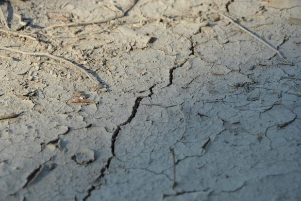 El Nino – odczuwamy skutki anomalii