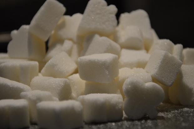 W sektorze cukrowniczym przetrwają tylko najlepsi, czyli wydajni