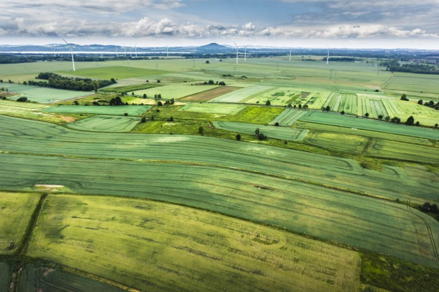 ANR podaje ceny gruntów rolnych w 2015 roku