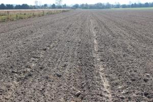 MRiRW: Projekt ustawy dot. obrotu ziemią nie narusza prawa dziedziczenia