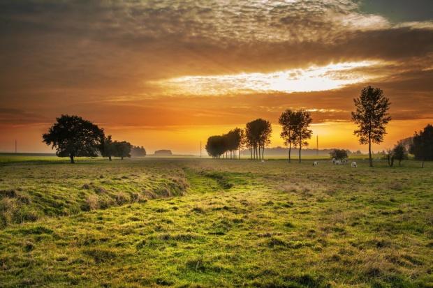 Ustawa o wstrzymaniu sprzedaży ziemi w przyszłym tygodniu podczas obrad rządu