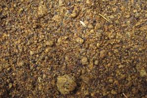 PSPO: Krajowa śruta rzepakowa nie jest wykorzystywana