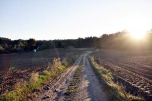 Dziś rząd zajmie się projektem regulującym obrót ziemią