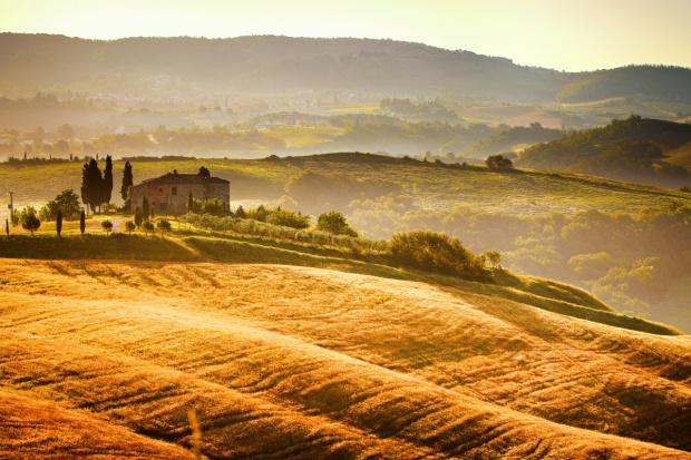 Włoska mafia zarabia na rolnictwie