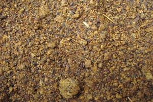 Niemcy: Po raz pierwszy skarmiono więcej śruty rzepakowej niż sojowej